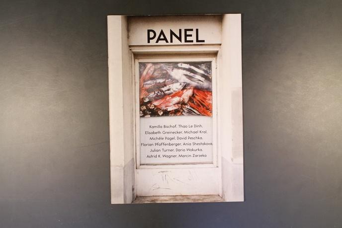 Panel thumbnail 13