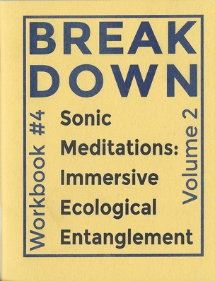 BREAK DOWN WORKBOOK #4: SONIC MEDITATIONS: IMMERSIVE ECOLOGICAL ENTANGLEMENT