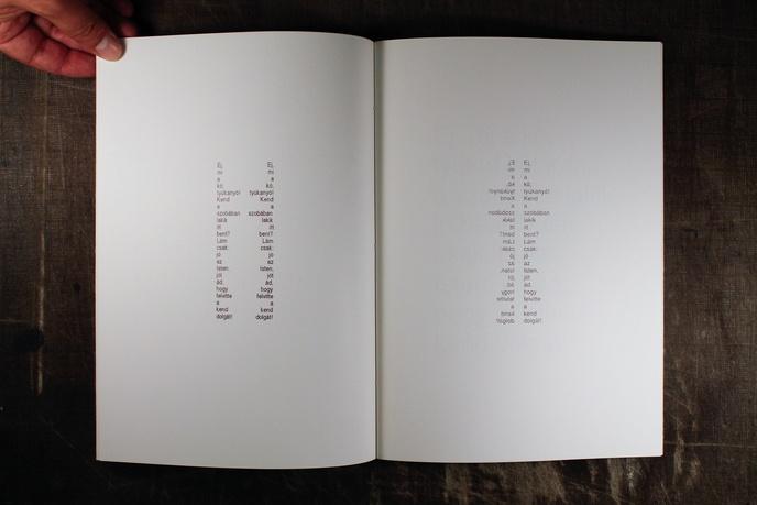 """Laszlo Lakner : """"Anyám tyúkja"""" : Computerversionen des Gedichts von Sándor Petöfi thumbnail 3"""
