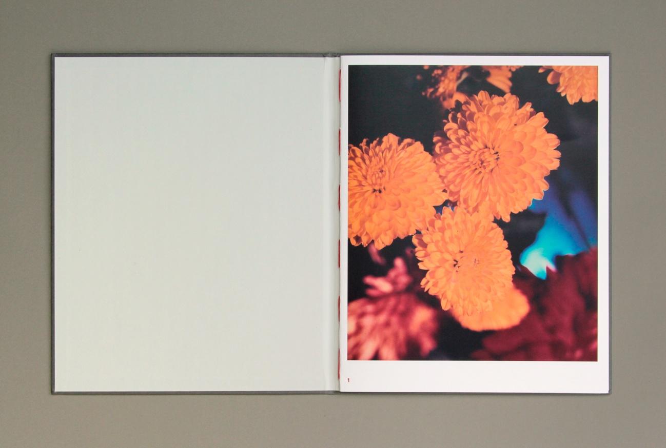 Gėlės thumbnail 7