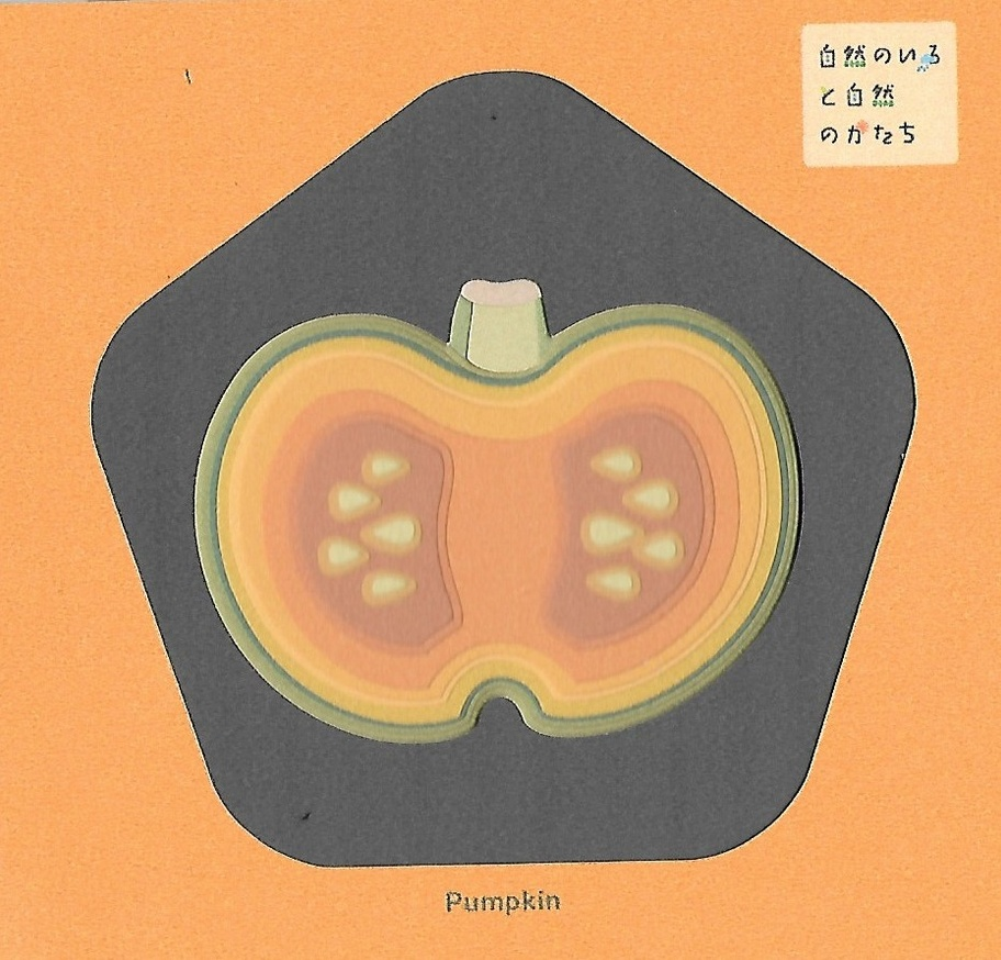 Natural Colors, Organic Shapes A (Apple, Pumpkin, Tomato) thumbnail 3