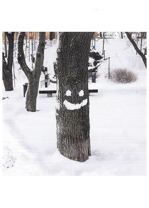 Smiling Tree, Sweden, 2014 Greeting Card