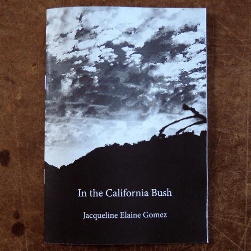 In the California Bush thumbnail 5