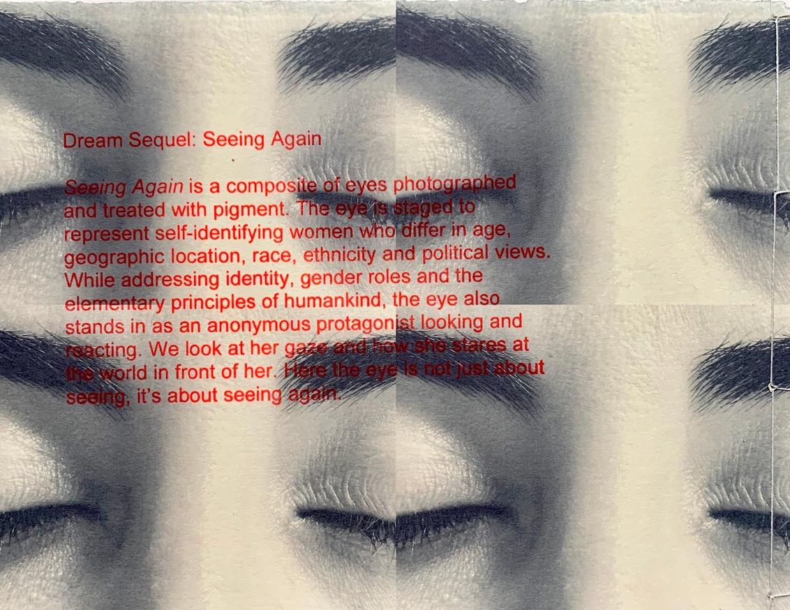 Dream Sequel: Seeing Again thumbnail 3