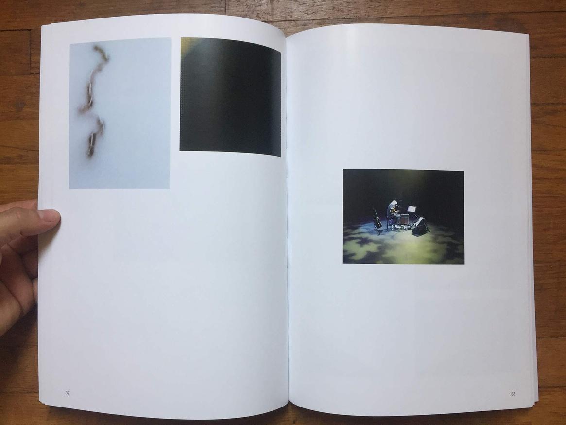 Altered Secession Catalogue - Michael Krebber (J Mascis) thumbnail 7
