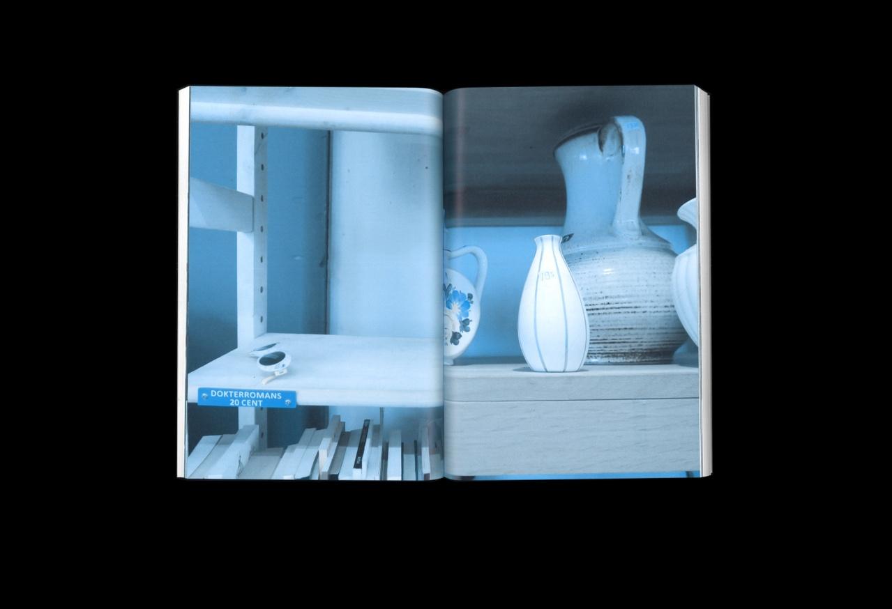 Shelf-Life thumbnail 5
