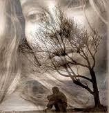 Avaliação Psicológica em Suspeita de Abuso Sexual, Atos Libidinosos, Alienação Parental