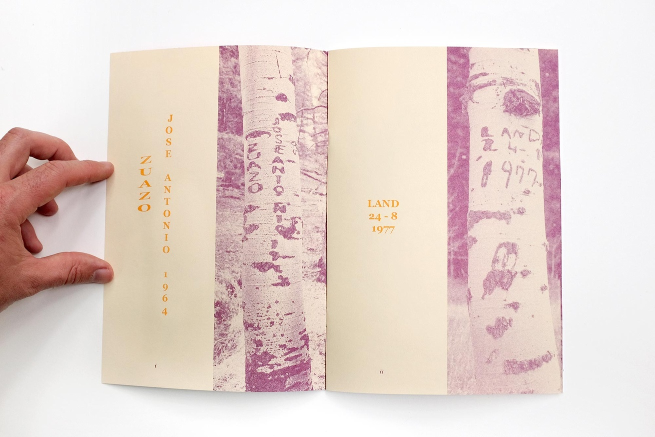 Written Names Fanzine #7: Names Carved into Aspen Trees by Sheepherders Sawtooth National Forest, Idaho thumbnail 3