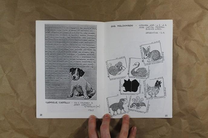 Animalia thumbnail 3