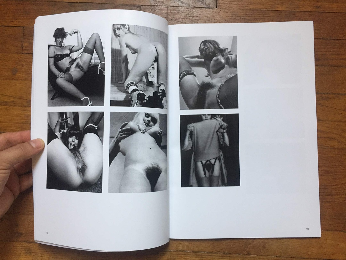 Altered Secession Catalogue - Michael Krebber (Pussy) thumbnail 5