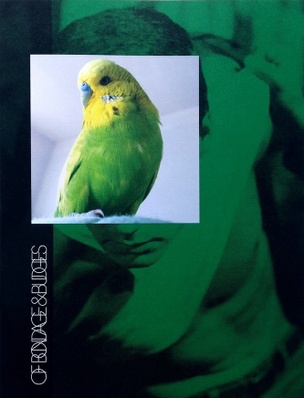 Of Bondage & Budgies