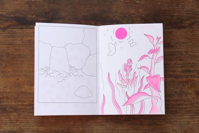 Papillon Blanc thumbnail 6