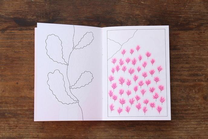 Papillon Blanc thumbnail 7