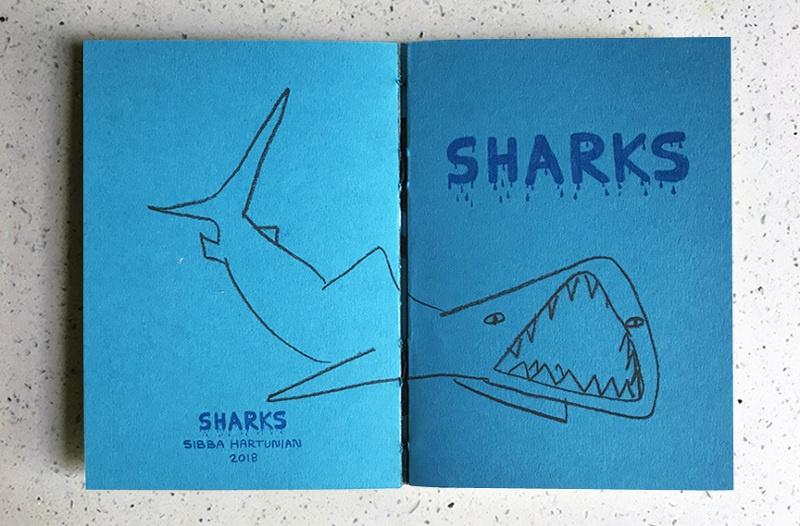 Sharks thumbnail 4