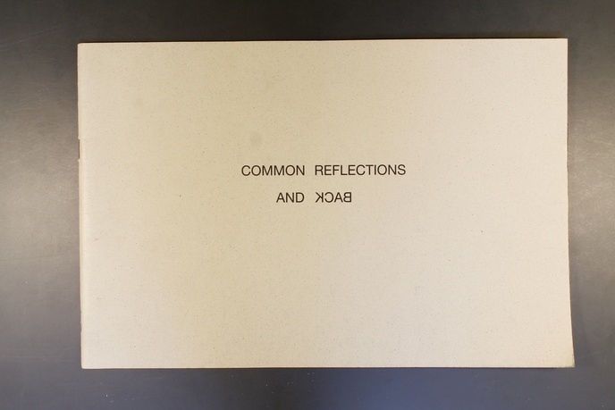 Common Reflections and Back thumbnail 2