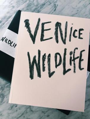 Venice Wildlife