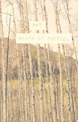 Wet Woods of Spring,