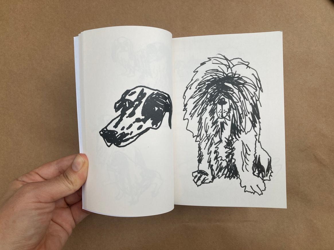 Dog thumbnail 4