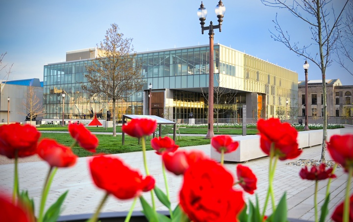 View of the cantilevered corner of Weil Hall as seen in the distance through a patch of bright red tulips.