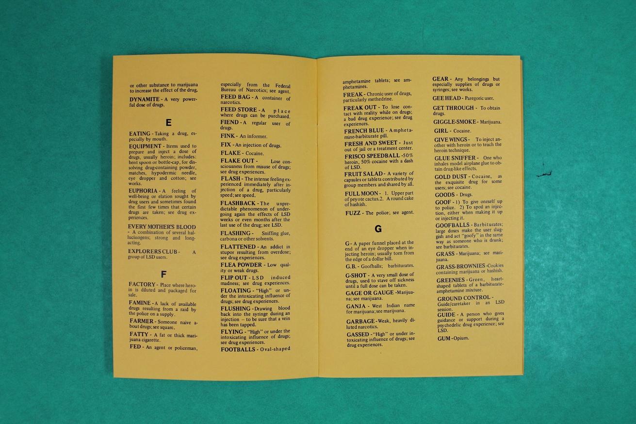 A Handbook of Drug Terms thumbnail 2
